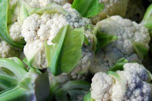 Лечебные свойства, польза и вред цветной капусты для организма человека. Цветная капуста — полезные свойства и противопоказания