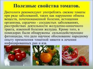 Томаты польза. Помидоры со сметаной. В каких случаях помидоры могут нанести вред организму