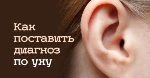 По форме ушей можно определить. Китайская диагностика по ушам (это полезно знать)
