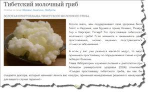Тибетский молочный гриб. Применение. Молочный гриб при диабете, рецепты применение. Полезные свойства тибетского гриба для женщин