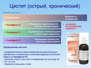 Лечение хронического цистита у женщин: препараты и народные средства. Причины и последствия хронического цистита у женщин. Основы лечения хронического цистита у женщин и мужчин