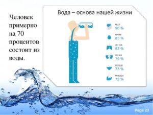 Сколько воды в человеке? На сколько процентов человек состоит из воды