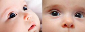 Когда станет понятен цвет глаз новорожденного. Когда меняется цвет глаз у новорождённых