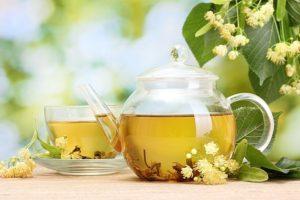 Жаропонижающие чаи и сборы. Вместо таблеток: эффективные жаропонижающие лекарственные растения