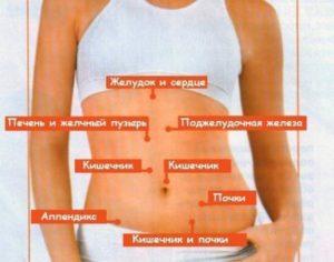 Что находится справа в боку. Что находится в правом боку у человека и почему болит