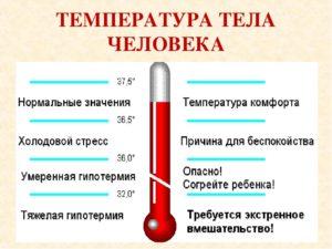 У ребенка температура 34.5 что. Пониженная температура тела у детей и ее причины
