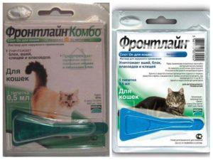 Стронгхолд или фронтлайн комбо инструкции. Фронтлайн для кошек и собак. Инструкция по применению Фронтлайна