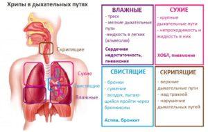 Причины и лечение кашля при вдохе и выдохе. Причины кашля на выдохе