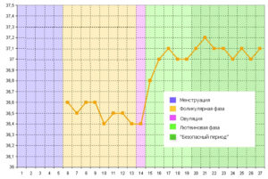 Поднялась температура после тренировки на следующий день. Изменение температуры тела во время физических нагрузок. Узнать больше на эту тему