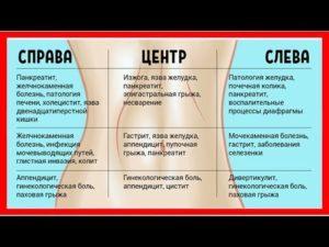 Пульсирование в животе с левой стороны. Для тех, кто хочет знать, почему пульсирует в животе