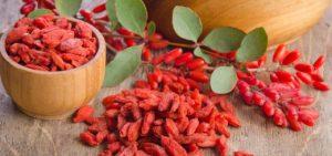 Как использовать сушеные ягоды барбариса. Барбарис. Полезные свойства. Польза сушеных ягод барбариса