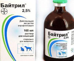 Ветеринарный препарат байтрил, инструкция по применению. Байтрил и другие препараты для цыплят бройлеров, инструкции применения Байтрил инструкция по применению