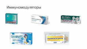 Народные иммуномодуляторы. Природные иммуномодуляторы