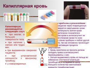 Чем отличается венозная кровь от капиллярной. Откуда брать кровь: из пальца или из вены