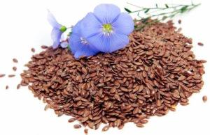 Белый лен для женщин. Семя льна: как правильно употреблять. Лен обыкновенный: описание, состав, выращивание в домашних условиях