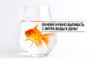 Почему нужно пить 2 литра в день. Зачем пить два литра воды в день и какая от этого польза
