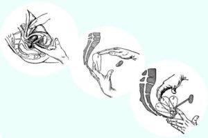Гинекологический массаж: показания и эффективность процедуры. Массаж матки в домашних условиях