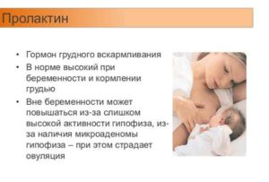 Влияние пролактина на зачатие: норма гормона для успешной беременности. Как пролактин влияет на зачатие