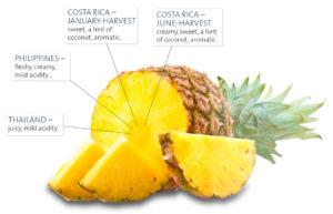 Почему ананас разъедает язык. После ананаса жжет и щиплет язык
