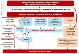 Как лечить железистую гиперплазию эндометрия народными средствами. Лечение гиперплазии эндометрия в постменопаузе