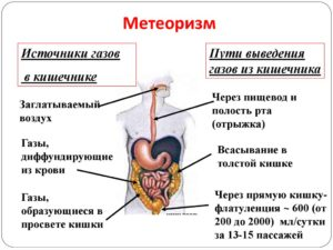 Как вывести газы из желудка. Вздутие, отрыжка и кишечные газы: как избежать неприятных симптомов. Что может вызывать повышенное газообразование в желудке?