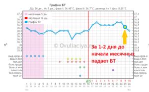Как меняется базальная температура перед месячными. Какая должна быть ректальная температура перед месячными. Понятие базальной температуры
