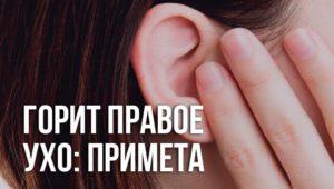 Горит левое ухо в четверг днем. К чему горит левое ухо: приметы, поверья и реальные советы