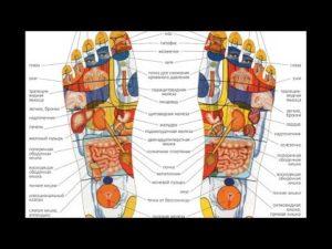 Точки на стопах ног отвечающие за органы. Биологически активные точки на стопах ног: полная схема