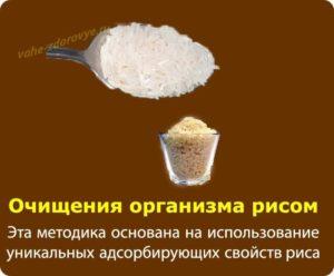Очищение организма рисом тибетский метод. Как правильно проводить очищение организма рисом