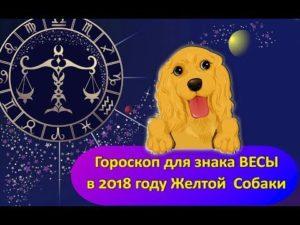 Знак зодиака весы год собаки. Весы - Собака: Характеристика