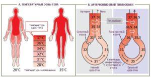 Давление при простуде. Может ли повышаться давление при простуде? Методы лечения