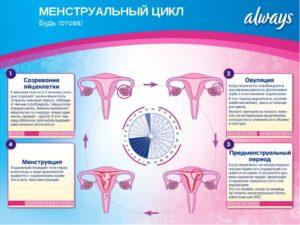 Кровь после месячных через 1 день. Месячные через неделю после месячных. Нарушение менструального цикла: причины, лечение