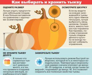 Как помогает тыква. Как сохранить полезные свойства тыквы? Данный овощ содержит множество полезных веществ