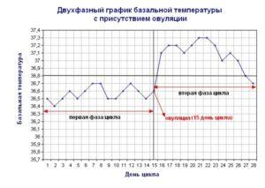 Базальная температура 36.9 за неделю до месячных. БТ во время месячные. Какая должна быть базальная температура при овуляции и после нее