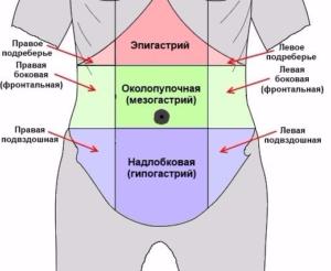 Эпигастральная область — что это такое и причины появления боли