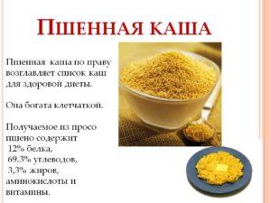 Чем полезна пшенная каша на воде. Пшенная каша – калорийность и химический состав. Польза пшённой каши на молоке
