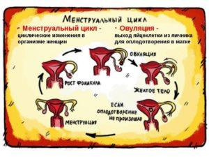 Основные правила во время менструации: что нельзя делать и почему. Изменения во время месячных в женском организме