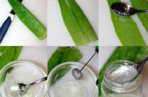 Лекарство из алоэ в домашних условиях - как приготовить? Как правильно выдавить сок из алоэ в домашних условиях? Как использовать отжимки от алоэ