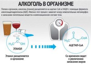 Препараты расщепляющие алкоголь. Какое воздействие на организм оказывает фермент расщепляющий алкоголь