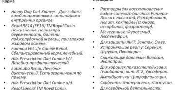 Чем кормить собаку при почечной недостаточности: подбираем правильный рацион. Правильно ли вы подобрали корм для собаки с почечной недостаточностью