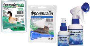 Фронтлайн для кошек инструкция по применению котятам. Прекрасное средство фронтлайн спасет вашу кошечку. Фронтлайн для кошек – отзывы