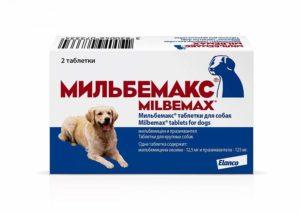 Глистогонка для кошек мильбемакс. Мильбемакс: глистогонное для собак. Противопоказания к применению Мильбемакса