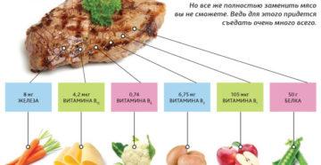 Чем вегетарианцы заменяют мясо и рыбу. Чем заменить мясо? Советы вегетарианцам