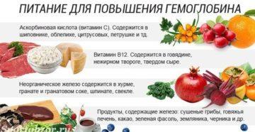 Народные средства для повышения гемоглобина. Шиповник гемоглобин
