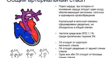 Общий артериальный ствол: описание, заболевания, лечение. Врожденные пороки сердца: общий артериальный ствол
