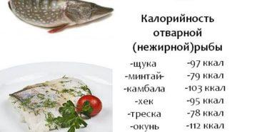 Какую рыбу можно на диете протасова