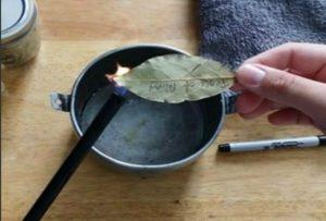 Если поджечь лавровый лист в квартире. Что произойдет с вашим здоровьем, если поджечь дома лавровый лист. Польза лаврового листа