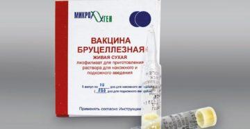 Препараты, применяемые для профилактики и лечения бруцеллеза. Вакцина бруцеллезная живая