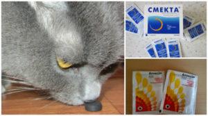 Можно ли коту давать активированный уголь. Активированный уголь коту при отравлении. Спасаем кошку при отравлении