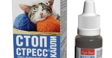 Как давать капли Стоп-стресс кошке? Стоп-стресс для собак Стоп стресс для кошек как давать